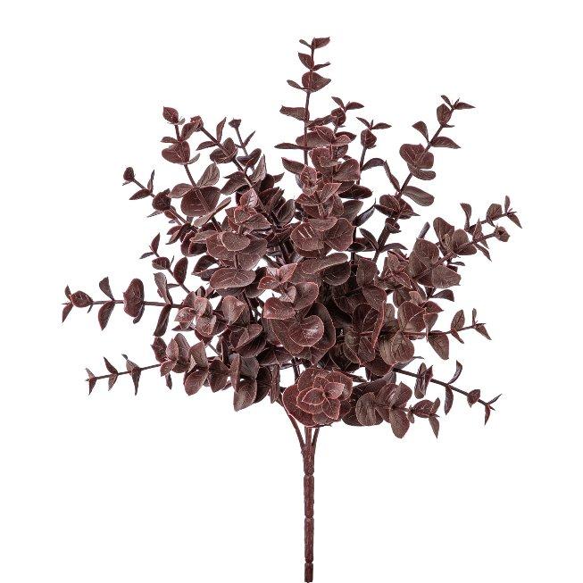 Eukalypthusbusch