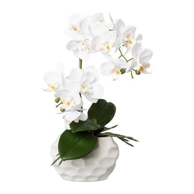 Phalenopsis In Ceramic Pot,Real Touch, 33 cm, White, pot