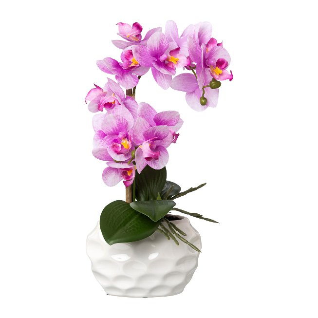 Phalenopsis In Ceramic Pot,Real Touch, 33 cm, Orchid,