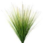 Dune grass bush, 76 cm, green