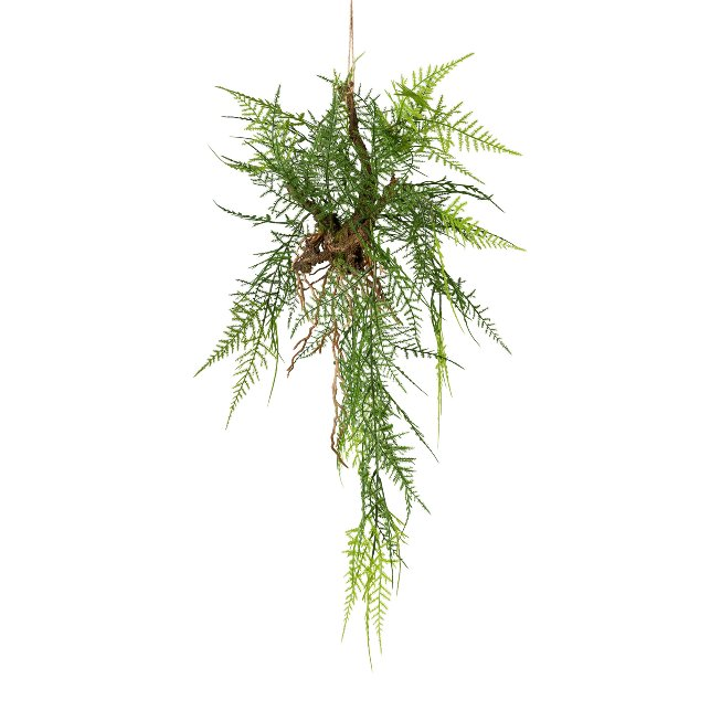Hanging Branch With Asparagus,70 cm