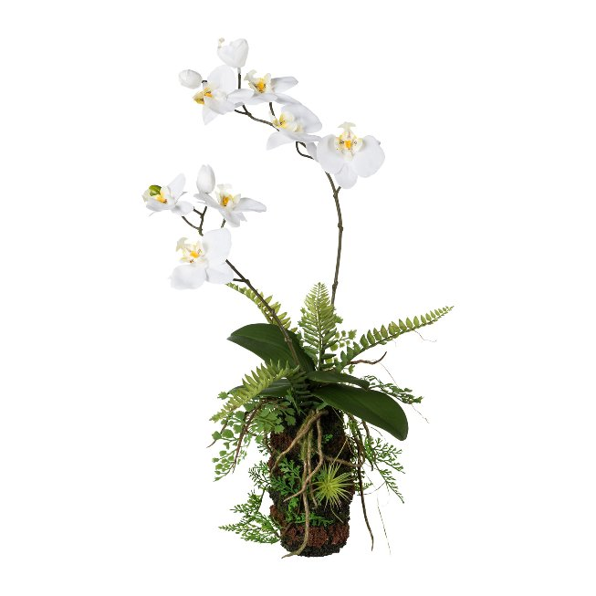Orchid-Fern Arrangement, 57,cm, White, Real Touch