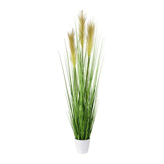 Grass Bush In White Pot, 95,cm, Green, Pot 11x10 cm
