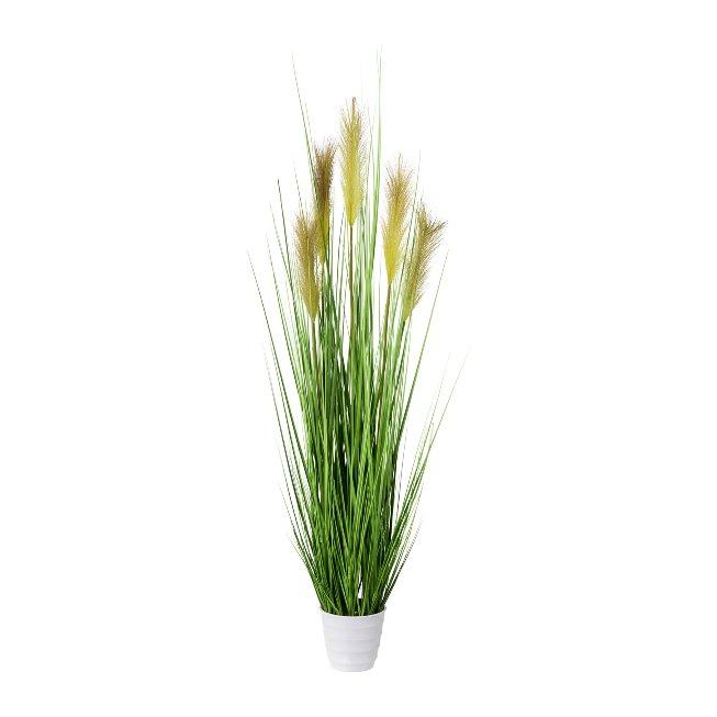 Grass Bush In White Pot, 110,cm, Green, Pot 14x12 cm