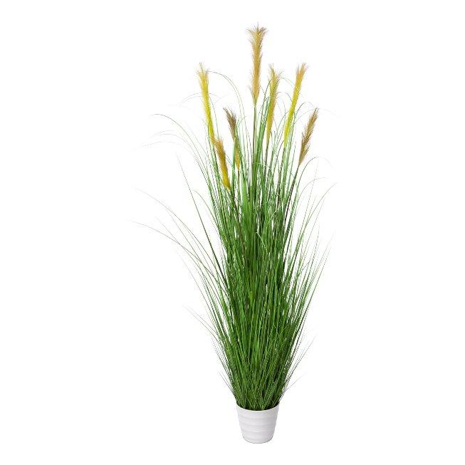 Grass Bush In White Pot, 180,cm, Green, Pot 20x17 cm