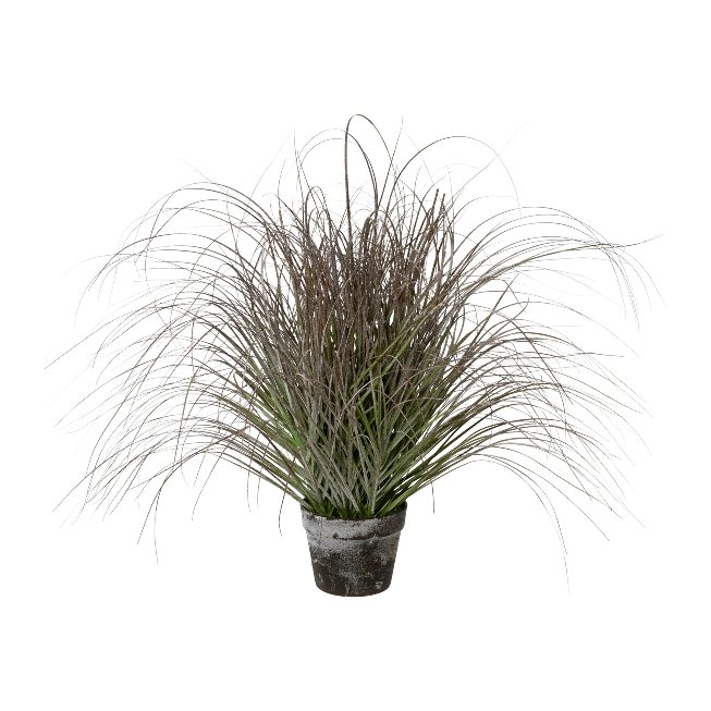 Grass Iced In Pot, 70 cm,Frost