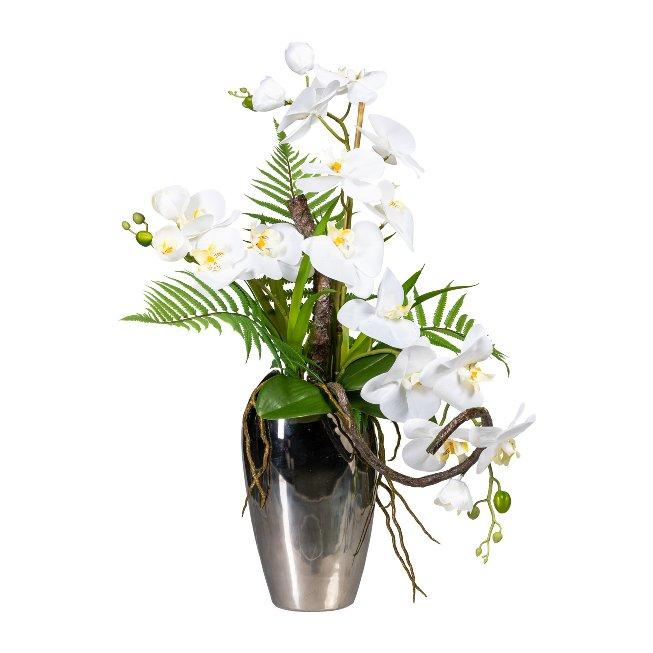 Phalaenopsis Arrangement x3,ca. 70 cm, White, In Ceramic