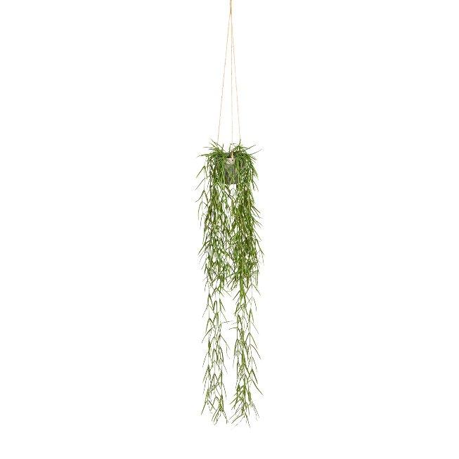 Tillandsia Aeranthos, ca. 90,cm Green, Plastic, In Hanging