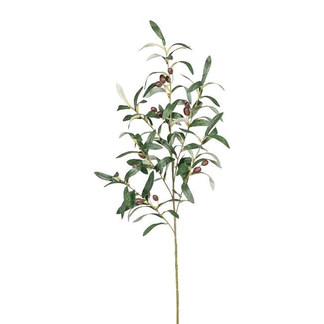Olivenzweig x6