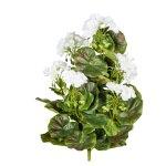 Geranium Bush x7, ca. 40 cm,White, 26 Shades, Material