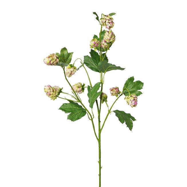 Hops, 77 cm, green-pink