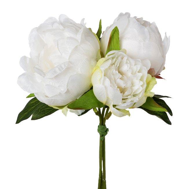 Peonia bunch, 25 cm, white