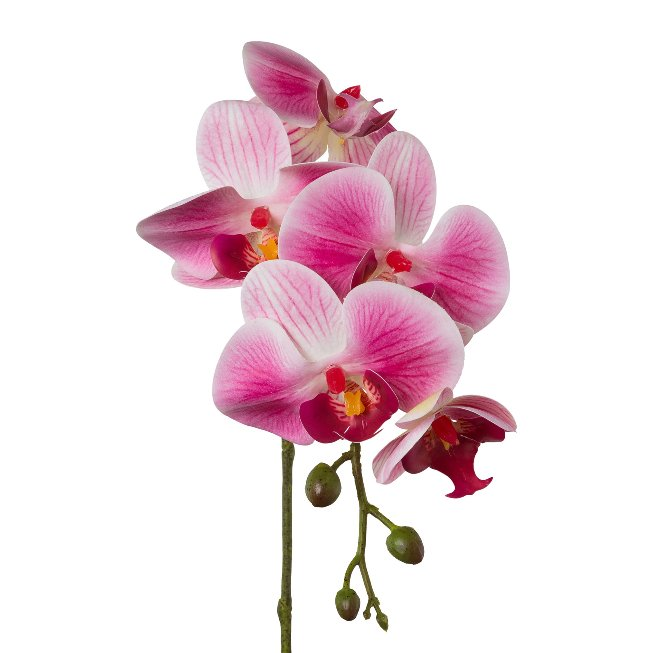 Phalenopsis x 5, 45 cm, Pink,Real Touch, set of 2 pcs
