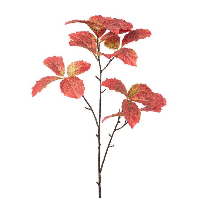 Chestnut leg branch, 98 cm,autumn coloured