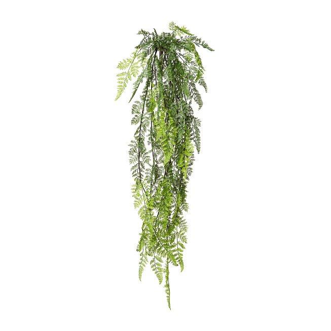 Fern hanging bush x 50, 114 cm