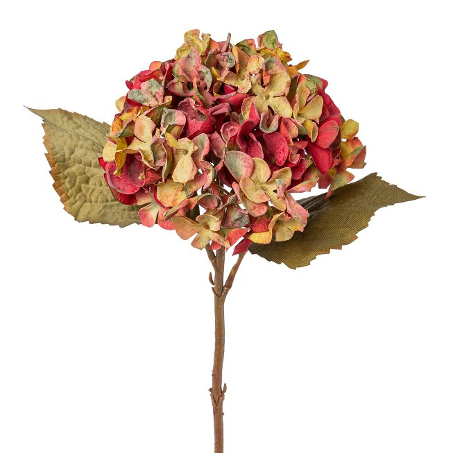 Hydrangea, 46 cm, green/red