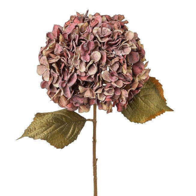 Hydrangea, 65 cm, mauve