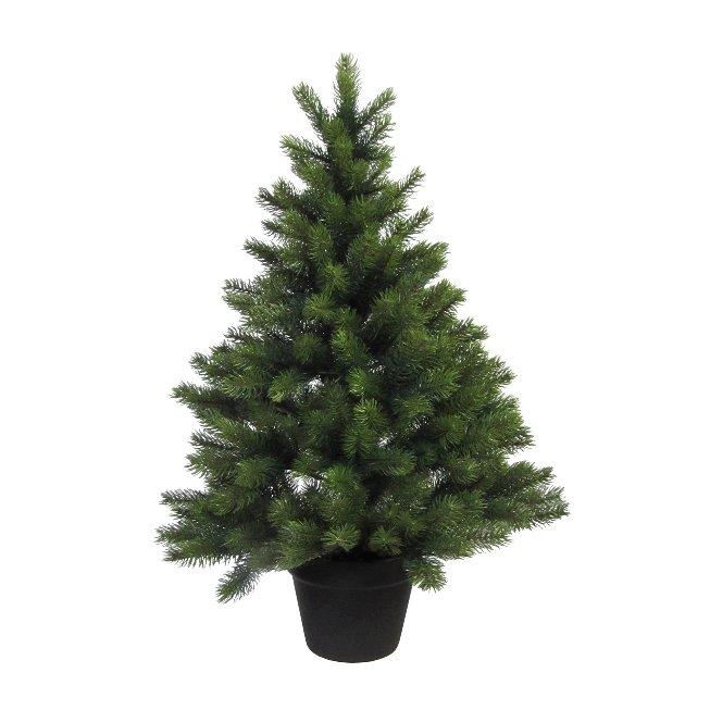 Tannenbaum im Topf 287 Tips