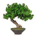 Bonsai Larch ,Ca 37 cm, In,Ceramic Bowl Brown 18x6 cm