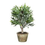 36 cm Olive Tree, 7 Fruits,Plastic, Green, In Natural Pot
